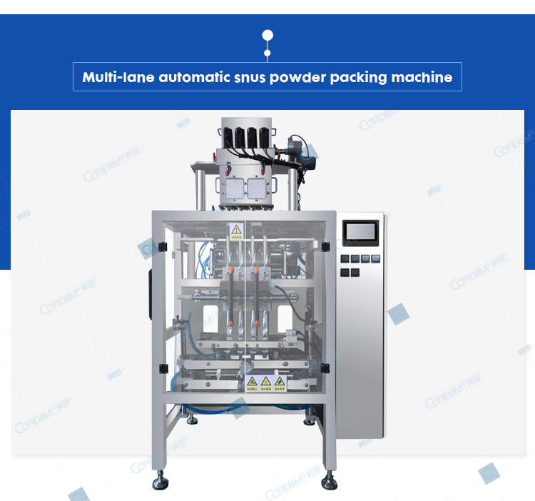 ZV-G4L Granule Packaging machine